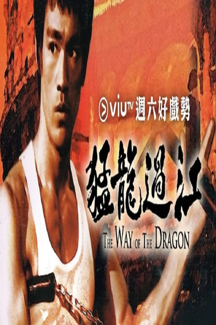 Way of the Dragon - 猛龍過江