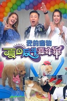 Fluffies Arena Summer Special - 我的寵物夏日反斗嘉年華